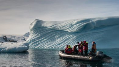 Photo of Should tourists still be visiting Antarctica?