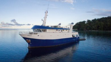 Photo of Solomon Islands Discovery Cruises