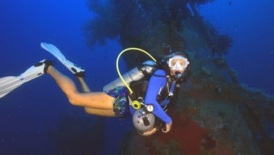 Photo of Tourism Solomons announces 2019 Dive Festival